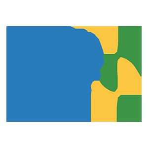 Logo da Brasil Júnior